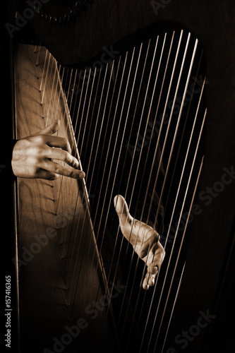 Foto auf Gartenposter Musik Harp strings close up hands