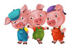 cartoon isolated young pigs in work outfit standing and looking on each other / isolated / illustration for children
