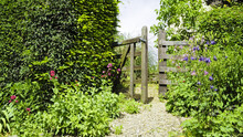 Open Wooden Gate In An English Cottage Flowering Garden, On A Summer Day.