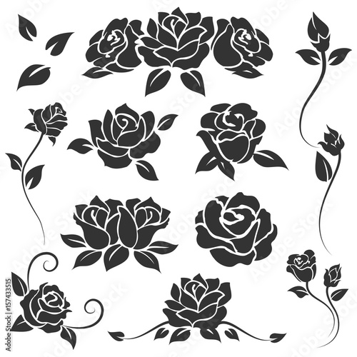 Hand Drawn Roses Isolated On White Background Vector Flourish