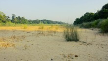 River In Sri Lanka Mahaweli