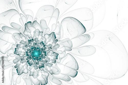 piekne-biale-tlo-z-kwiatem-niebieski-fraktal-malowane-akwarelami