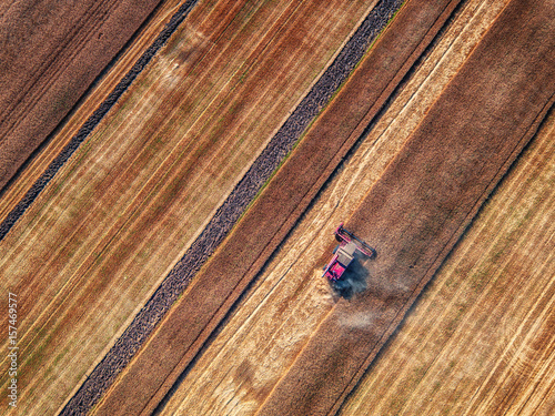 In de dag Luchtfoto Aerial view of Combine harvester agriculture machine harvesting golden ripe wheat field