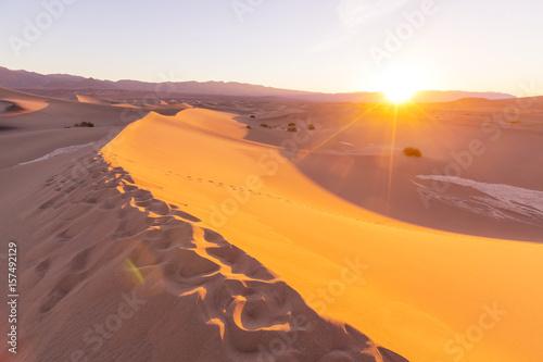 Tuinposter Algerije Sand dunes in California