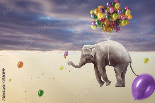 Keuken foto achterwand Olifant Elefant hängt an mehreren Luftballons