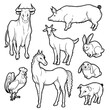 Vector black and white sketch set of isolated farm animals. Collection of silhouettes agricultural pets. Horse rooster pig rabbit goat and cow on the label for organic products or advertising flyers.