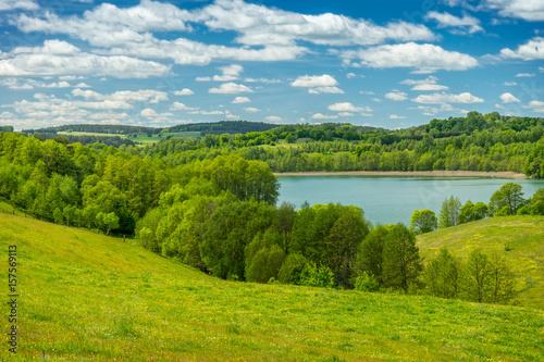 Fototapeta Spring landscape, Lake among the greenery obraz na płótnie