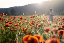 Pregnant Woman  On The Poppy Field