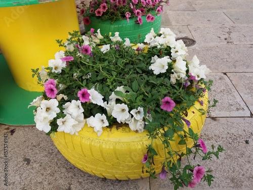 Fotografia  riciclo creativo con pneumatici delle automobili e piante