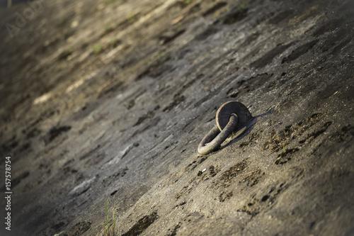 Fotografiet  Befestigung für eine Eisenkette