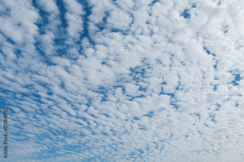 Altocumulus cloudscape on blue blue sky, Beautiful Cirrocumulus or Altocumulus o Canvas Print