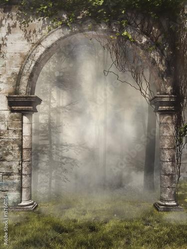 Obraz na plátně Stara brama z bluszczem w mglistym lesie