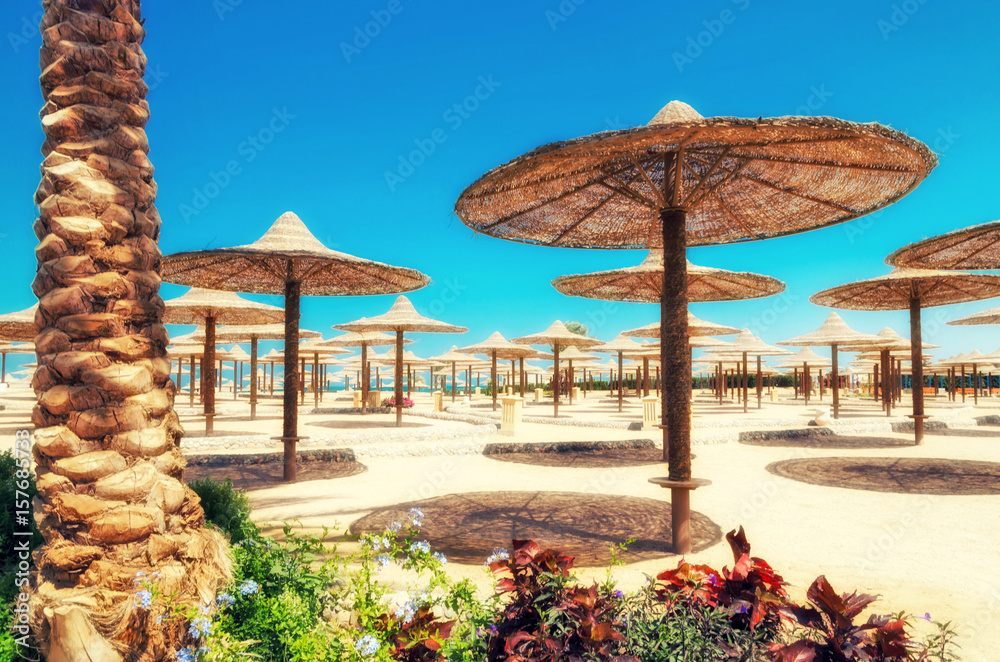 Fototapeta Chaise lounges and parasols on the beach against the blue sky and sea. Egypt, Hurghada