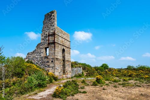 Fotografie, Obraz  Thomas's Shaft Pumping House, West Basset Mine, Carnkie, Redruth, Cornwall, UK