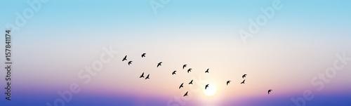 Photo amanecer azul de colores suaves