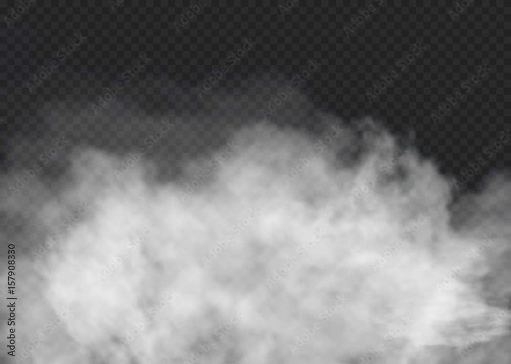 Fototapety, obrazy: Fog or smoke isolated transparent special effect. White vector cloudiness, mist or smog background. Vector illustration