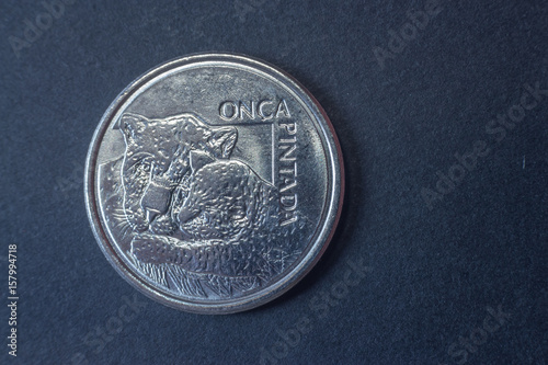 Poster  Fifty cruzeiros reais 1993 Brazil head coin, vintage old, difficult and rare to find