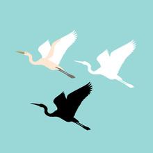 Crane Bird Vector Illustration Style Flat Silhouette