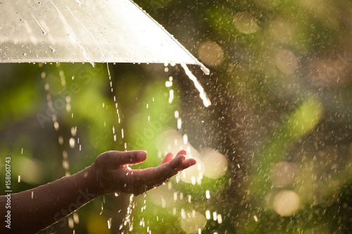Photo  Woman hand with umbrella in the rain in green nature background
