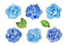 青いバラ 水彩イラス...
