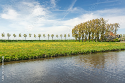 Slika na platnu Dike with a row of trees and farmhouse in the Beemster Polder