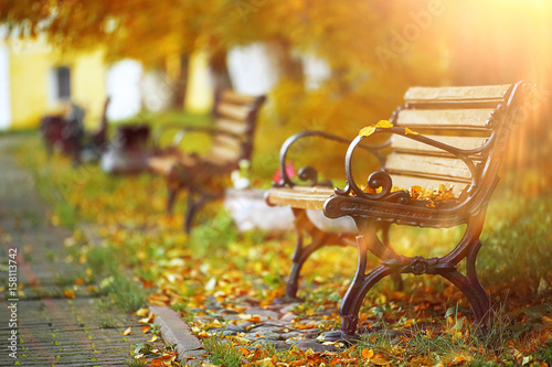 Tuinposter Herfst Benches in the autumn park