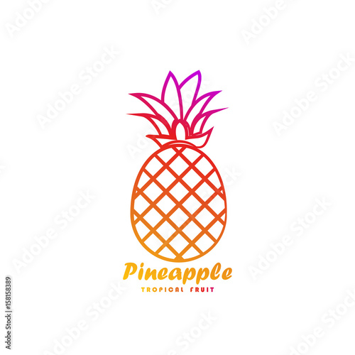 template logo for pineapple tropical fruit buy this stock vector