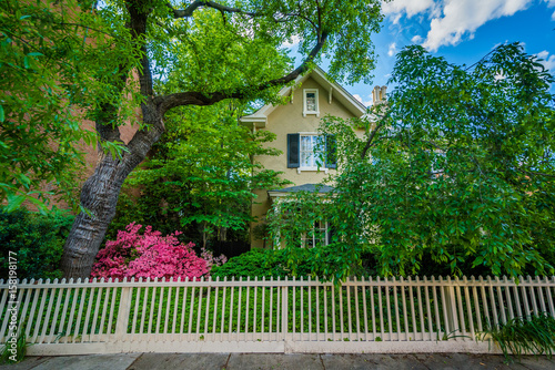 House with fence and gardens, in Bolton Hill, Baltimore, Maryland Wallpaper Mural