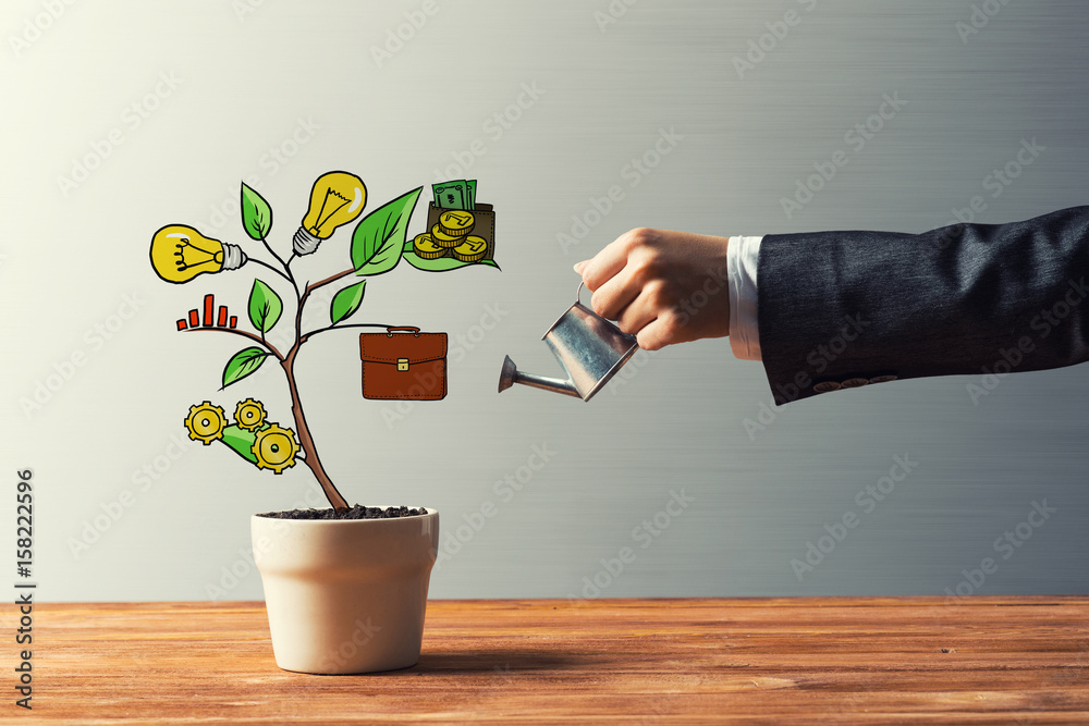Fototapety, obrazy: Drawn income tree in white pot for business investment savings and making money