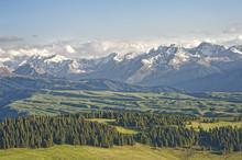 The Landscape Of Grassland  In...