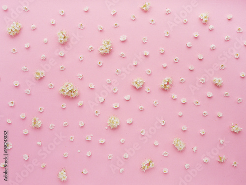 Wall Murals Lily of the valley Small flowers on a pink background. Pattern of small white and purple flowers. Lilies of the valley and lilac. Floral abstract background.