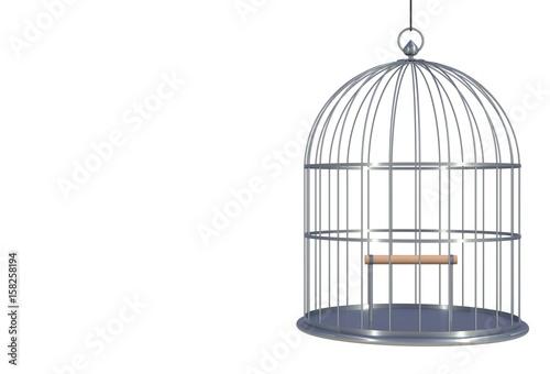 Fotografie, Obraz  Empty bird chromium cage Isolated on white background, 3D rendering