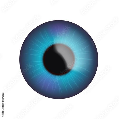 Garden Poster Iris blue eye on white