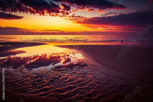 Fototapeta Dramatic sunset with seagulls and sea