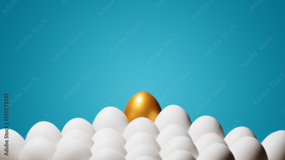 Fototapeta Concept of individuality, exclusivity, better choice. One golden egg among white eggs on blue background.