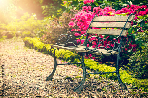 Fototapety, obrazy: Bench in the colorful park