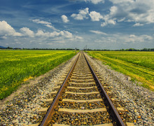 Railroad Track In Open Green Field, Summer Time Traveling, Freedom Of Movement