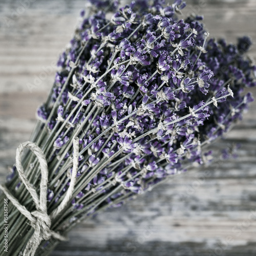 Bouquet of dried lavender