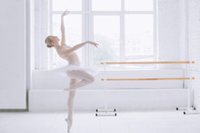 Young Ballerina In Ballet Class