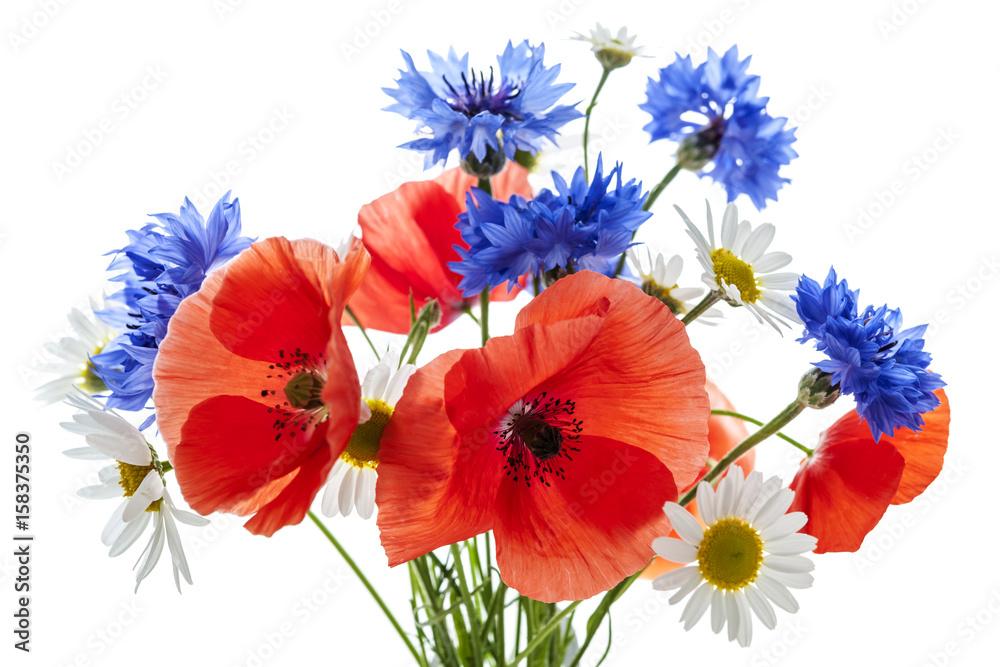 Fototapeta Bukiet polnych kwiatów - obraz na płótnie