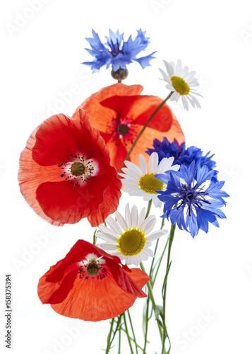 Fototapeta Wildflower arrangement obraz na płótnie