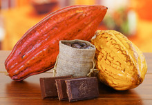 Fresh Cocoa Pods And Beans Ins...
