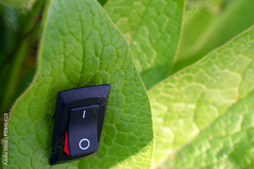 Fotografía  Leaf with inserted power switch turned to position on