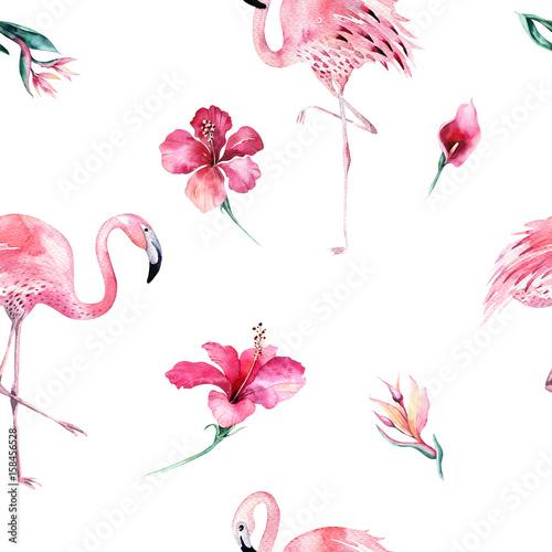 Fototapeta Tropikalny odosobniony bezszwowy wzór z flamingiem Akwarela zwrotnikowy rysunek, róża ptak i greenery drzewko palmowe, zwrotnik zielona tekstura, egzotyczny kwiat Zestaw Aloha