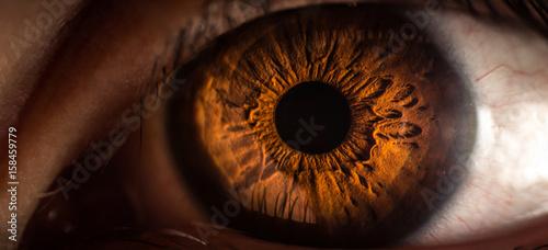 Poster Iris Makro Auge