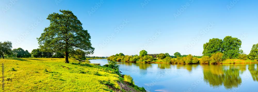 Fototapeta Landschaft im Sommer mit Fluss, Wiese und Baum