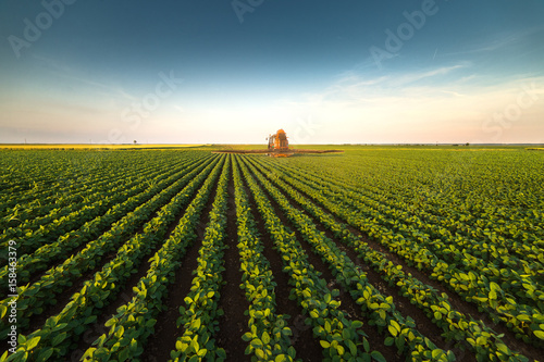 Tractor spraying soybean field at spring Wallpaper Mural