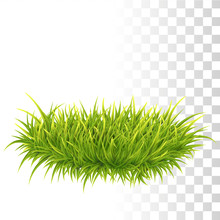 Tussock Of Green Grass