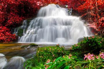 Fototapetabeautiful waterfall in rainforest at phu tub berk mountain phetchabun, Thailand (Mun Dang waterfalls)