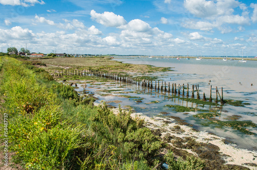 Photo  Essex - Coastal Mud, Marsh and Farmer's Teeth